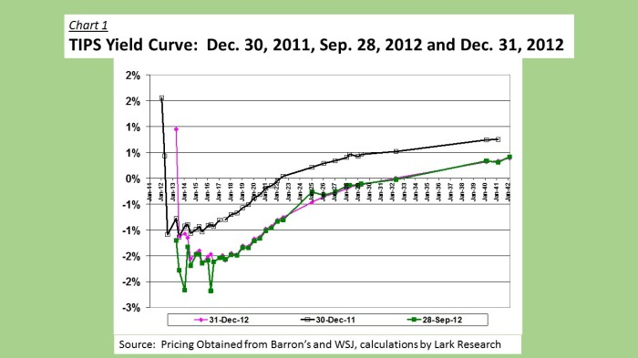 2012 TIPS Yield Curve